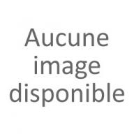 PARE BRISE AIXAM (7AP107V)